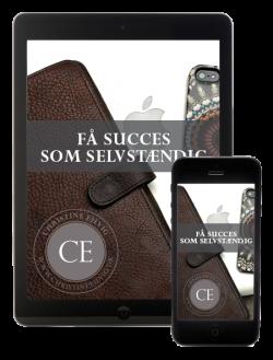 Få Succes Som Selvstændig